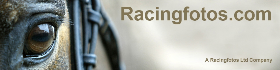 Welcome to Racingfotos.com - Horse Racing Stock Photography